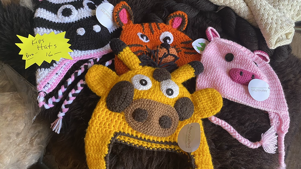 Kids -Toddler knitted animal hats
