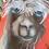 Thumbnail: Alpaca canvas bags