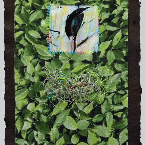 Anne-Julie Hynes, Brazil no.2, 2018