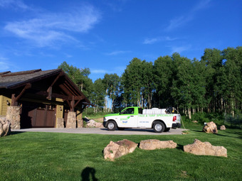 Tree, Lawn Care and Pest Control Professionals