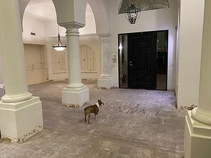 After Saltillo Tile Removal