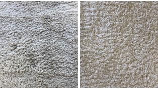 Rug Carpet Cleaning Phoenix