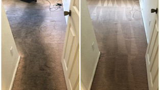 Carpet Cleaning Cleaning Glendale