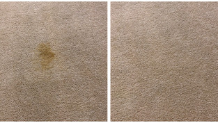 Bedroom Carpet Stain Cleaning Phoenix