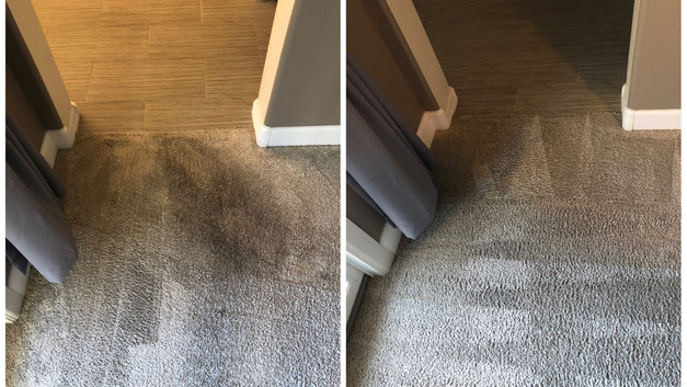 Professional Carpet Cleaning Glendale