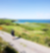 Sherkin Island Aug 2014 RS 23.jpg