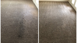 Carpet Cleaning Cleaning Chandler