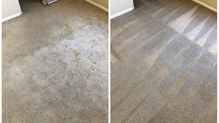 Carpet Cleaning Cleaning Phoenix