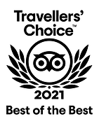 TripAdvisor 2021 Travellers Choice Best of the Best.png
