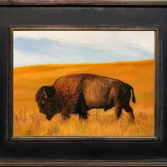 bison2.2.jpg