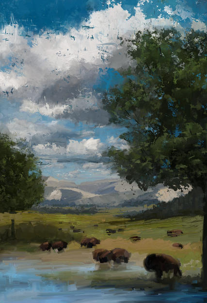 Bison Valley - WIP