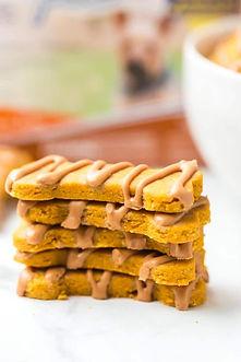Homemade-Peanut-Butter-and-Pumpkin-Dog-T