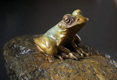 Sculpture grenouille de Andrée Marcoux-art animalier Québec Canada