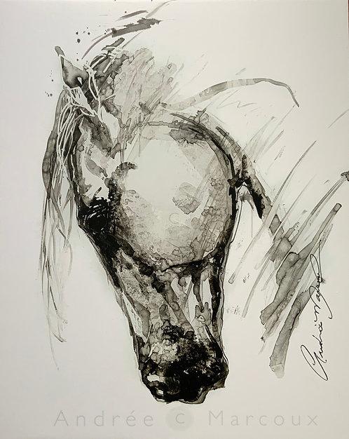 Cheval de Andrée Marcoux-art cheval-art animalier