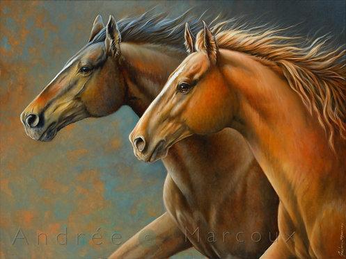 Giclée reproduction peinture de Andrée Marcous-art cheval québec