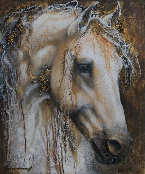 Peinture Cheval blanc de Andrée Marcous-art animalier Québec Canada