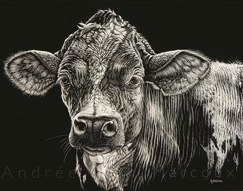 Vache giclée reproduction de Andrée Marcous-art animalier Québec Canada