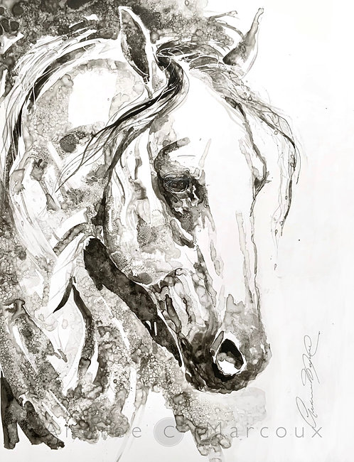 Peinture noir et blanc de Andrée Marcoux-art animalier Québec Canada