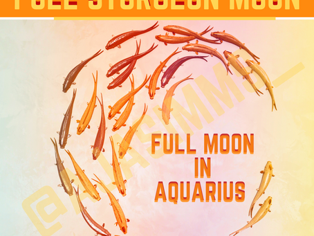 Welcome to the Full Moon in Aquarius 🌕♒!