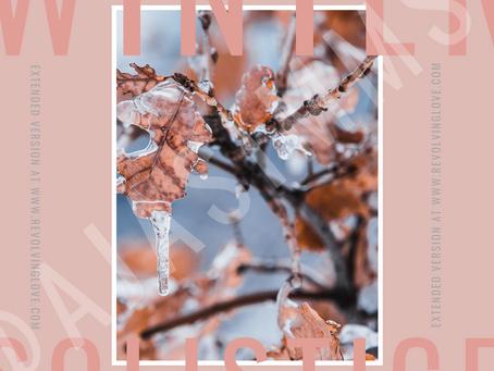 Winter Solstice 2020