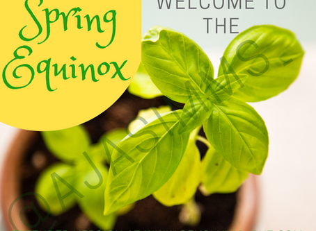 Welcome to #Spring #Equinox 🌱🌻🌸🌹🌺💐☀️!
