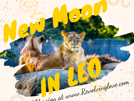 Welcome to the New Moon in Leo 🌑♌!