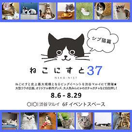 インスタ告知(渋谷8月)-01.jpg