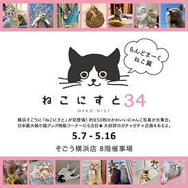 インスタ告知(横浜)1.jpg