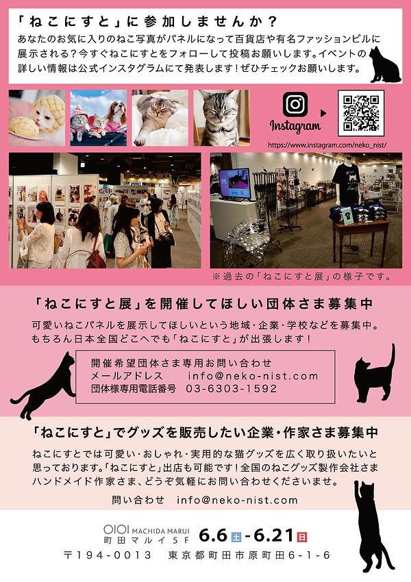 チラシ裏(WEB用).jpg
