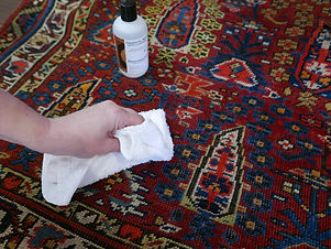 spot cleaner and rug