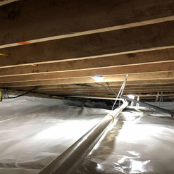 Mold rem Dec 19 Benton - 5.jpg