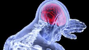 Cuidado! Saiba que seu cérebro descarta muitas informações que podem estar prejudicando seu futuro
