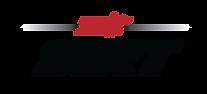 NLT-SIRT-Logo-transparent.png