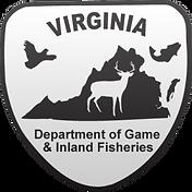 VDGIF-Logo-300x300.png