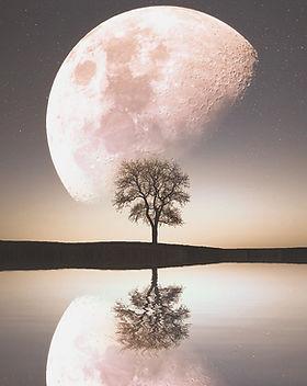 moon-1807743_1920_edited.jpg
