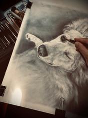 Wink Pup Portrait.jpg