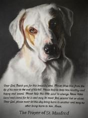 Laura's Pup Final St.Manfred Prayer.jpg