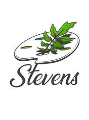 Stevens Logo Draft Full Page Sample.jpg