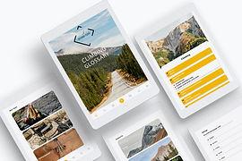 internal_flight_climbing_glossary_app