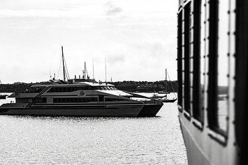 The Harbor BW