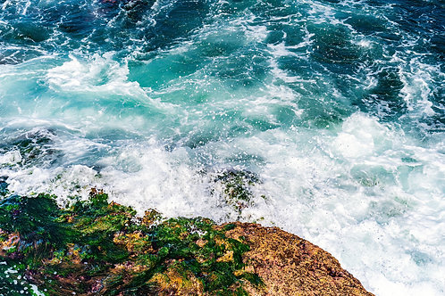 La Jolla - The ocean. Seal Rock