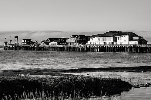 Stearns Wharf. BW