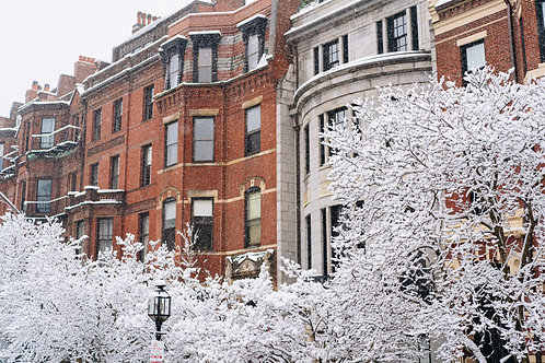 Snowy views