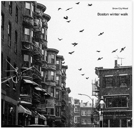 Boston City Walk. The Photobook