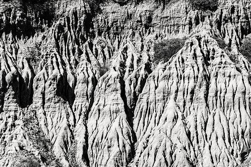 Torrey Pines Textures