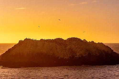 Bird Rock Vista Point. The sunset