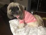 Carolina pink sweater.jpg