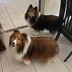 Cooper and Dakota.jpg