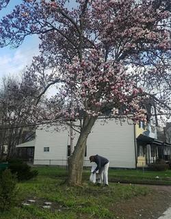 Flower Lady Under the Flower Tree