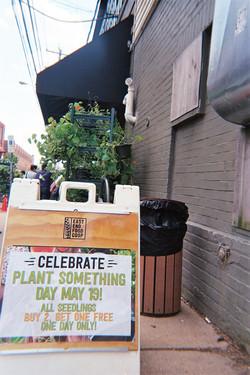 Celebration of Plants